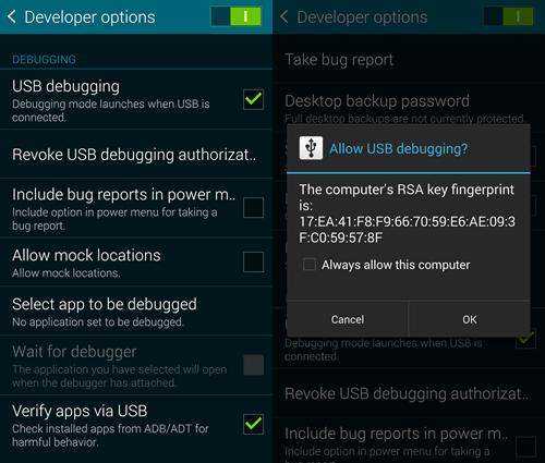 Enable USB debugging on Google Pixel Phone.